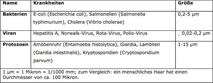 Übersicht Schädliche Mikroorganismen