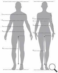 Brustumfang, Taillenumfang, Hüftumfang, Innenbeinlänge und Armlänge