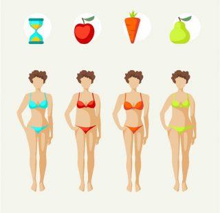 Die unterschiedlichen Körperformen bei Frauen - Apfelform, Karottenform, Birnenform und Sanduhrform