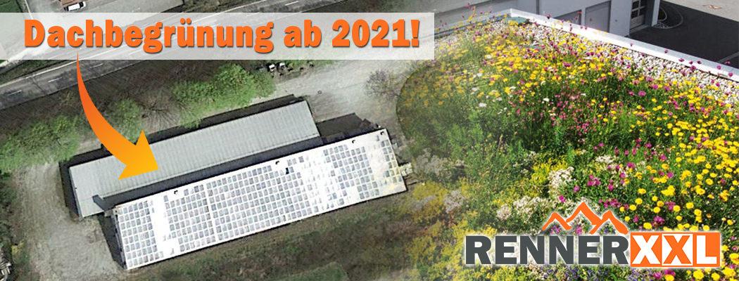 Nachhatligkeit Renner XXL Dachbegrünung und Photovoltaik