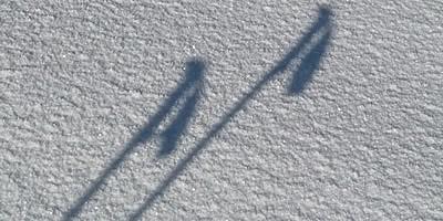 Schneeschuhwandern Trekkingstöcke