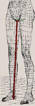 Innere Beinlänge ausmessen