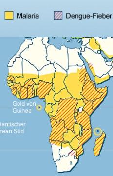 Malaria und Dengue Fieber in Südamerika