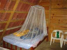 mosquito netz